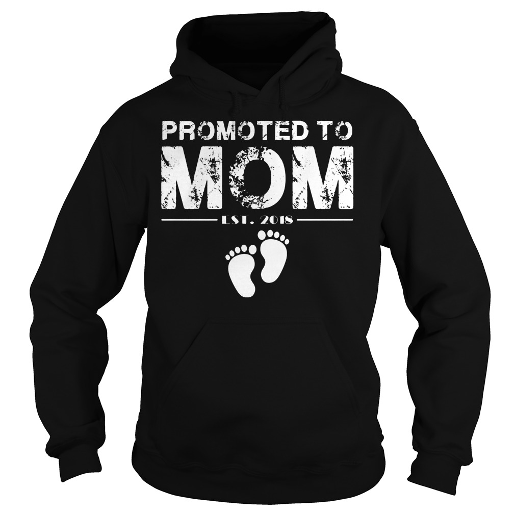Promoted To Mom Est 2018 Hoodie