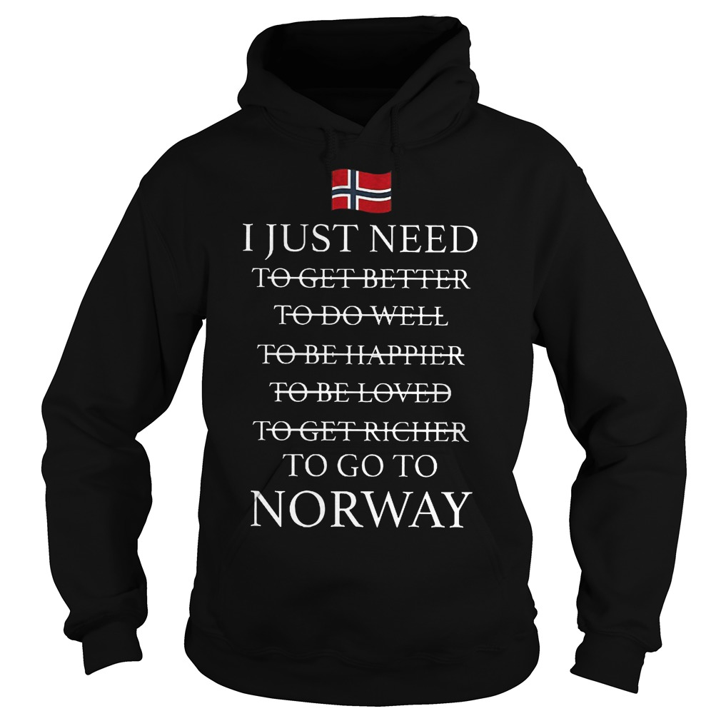 I Just Need To Go To Norway Hoodie