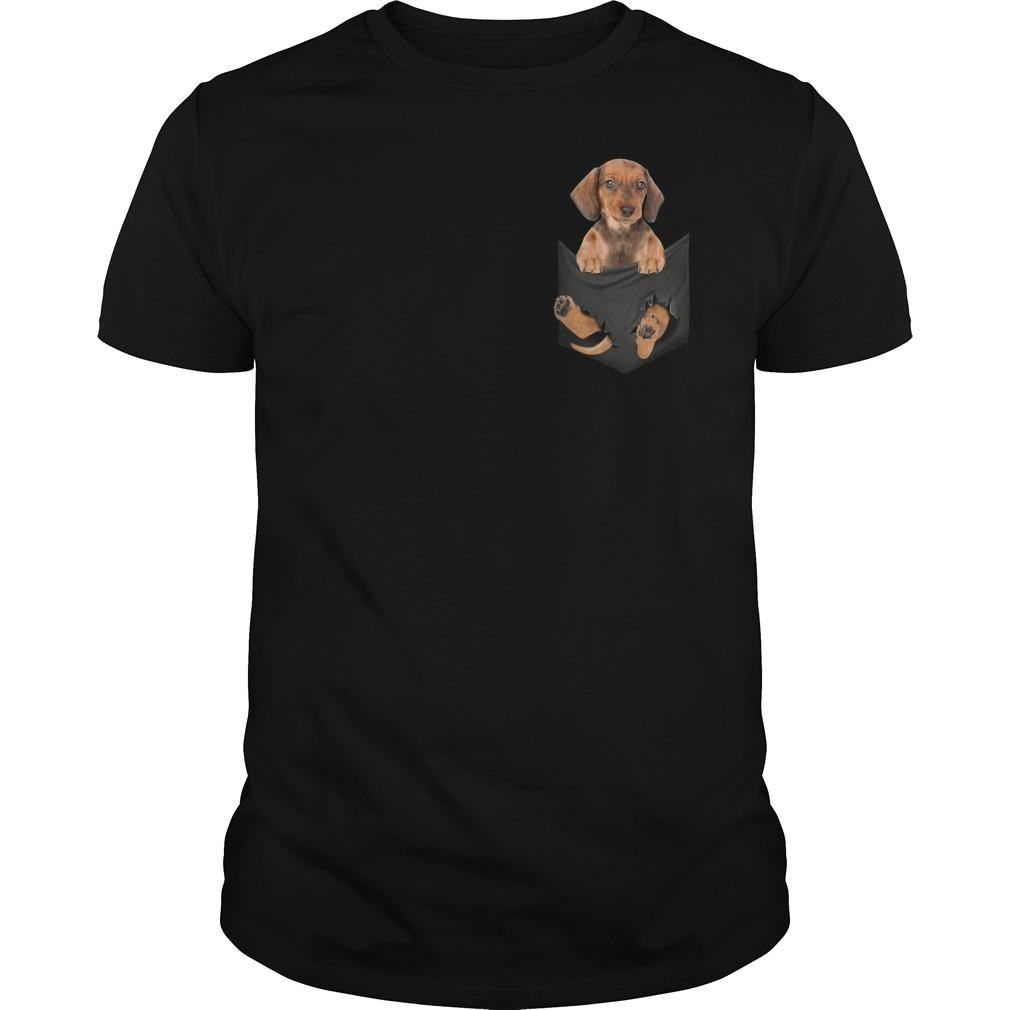 Original Dachshund in Tiny Pocket shirt