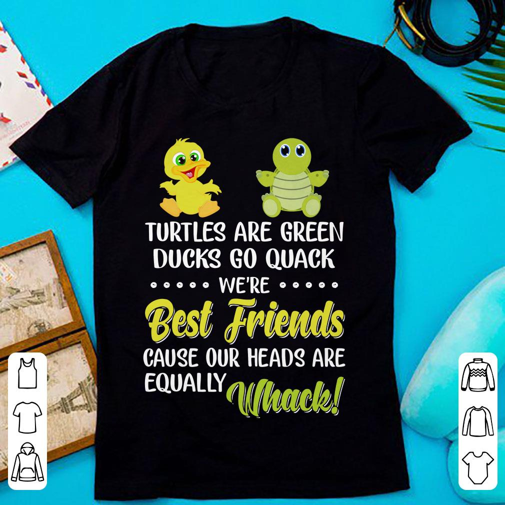 We're best friend cause our heads are qually whack Turtles are green ducks go quack shirt